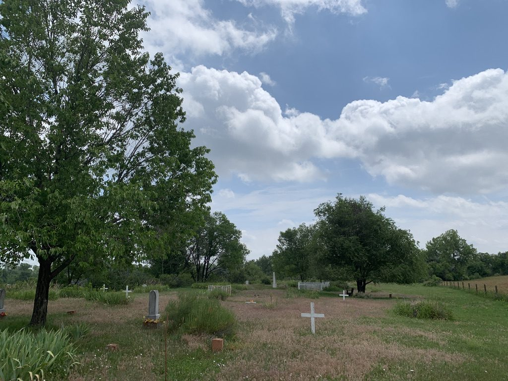 Field with a green tree to the left and in the background. White stones and crosses dot the landscape.